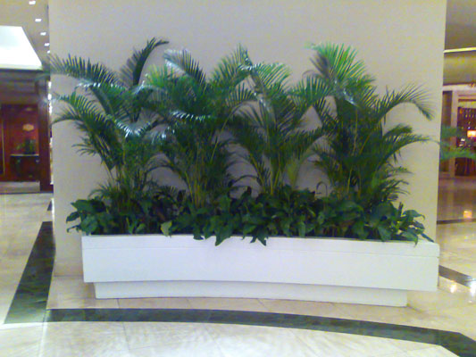 Whinter: Chapter Grotto Landscaping Designs Philippines
